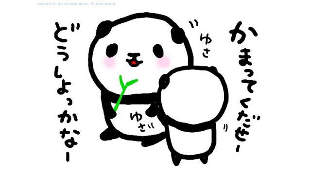 panda 035