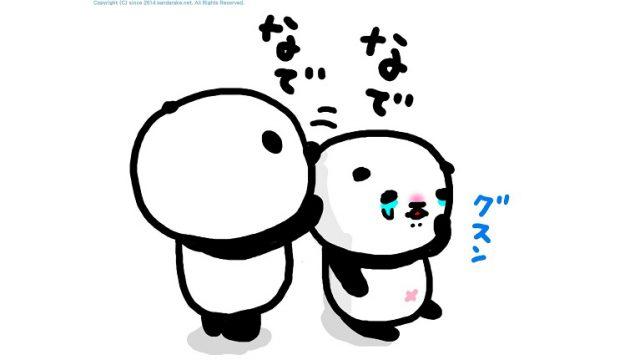 panda 004