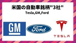 米国 自動車株 テスラ GM フォード